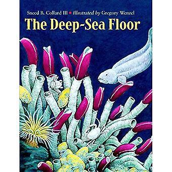 The Deep-Sea Floor