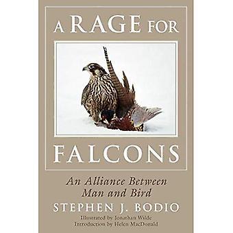 Ett raseri för Falcons: en allians mellan människa och fågel