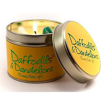 Lily Flame Scented Candle in a presentation Tin - Daffodils and Dandelions