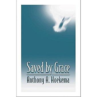 Saved by Grace by Anthony A. Hoekema - 9780802808578 Book