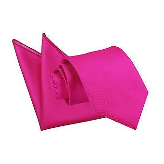 Fuchsia roze solide Check Tie & zak plein Set