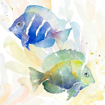 Tropical Fish Square IV Poster Print by Lanie Loreth