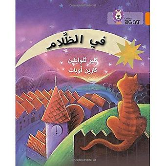 Collins Big Cat Arabic - In the dark: Level 6