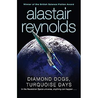 Diamond Dogs, Turquoise dagen