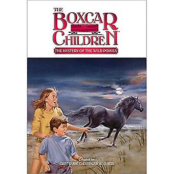 Mysteriet med de vilda ponnyerna (Boxcar barn)