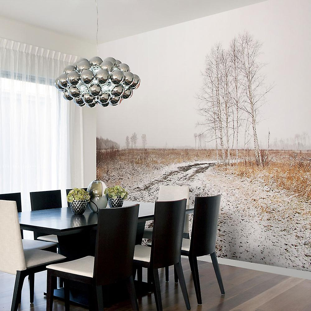 Papier peint - Winter field