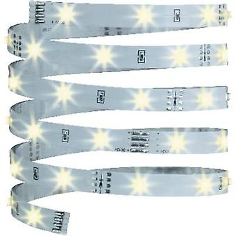 Paulmann LED strip + plug 12 V 300 cm Warm white YourLED Eco 70254