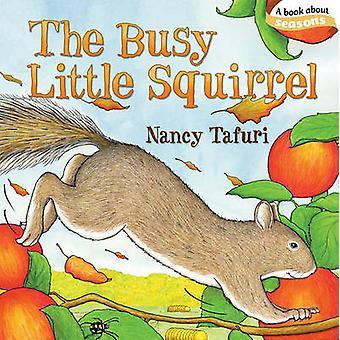 السنجاب قليلاً مشغول بنانسي تافوري-نانسي تافوري-97814424072