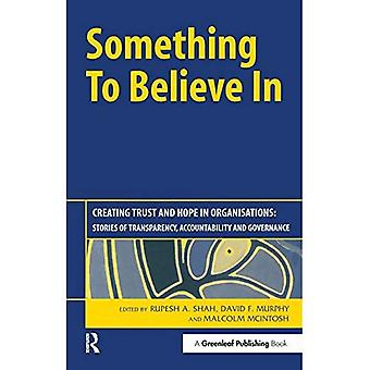 Something to Believe in: Creating Trust and Hope in Organisations: Stories of Transparency, Accountability and...