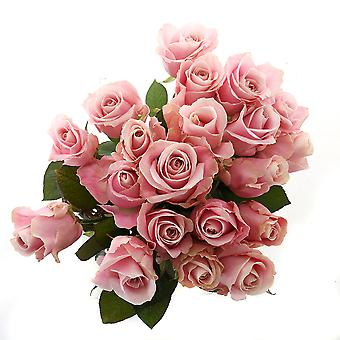 beautiful light-pink bouquet of roses, big | Height: 60 cm