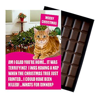 Ginger Tabby Cat Christmas Gift Funny Xmas Presents for Cat Lovers Boxed Chocolate Greeting Card