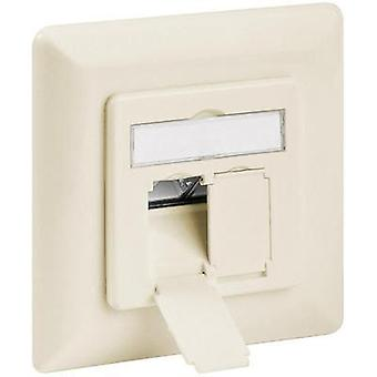 Network outlet Flush mount Insert with main panel and frame CAT 6A Goobay Beige
