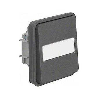 Berker Toggle switch W.1 (surface-mounted) Grey, Light grey 30763555