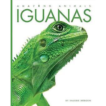 Amazing Animals - Iguanas by Valerie Bodden - 9781628323627 Book
