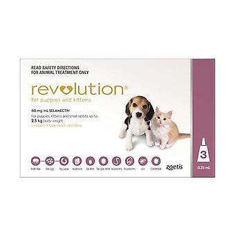Revolution Pink Pup/Kit 3 Pack