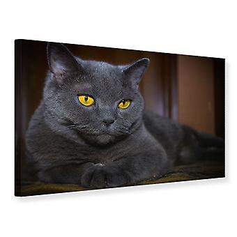 Leinwand drucken Katze Göttin