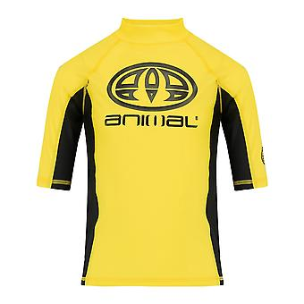 Animal Hiltern Short Sleeve Rash Vest