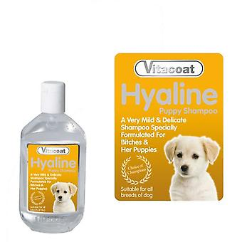 Vitacoat Carafe Hyaline Shampoo Concentrate 5L (Dogs , Grooming & Wellbeing , Shampoos)