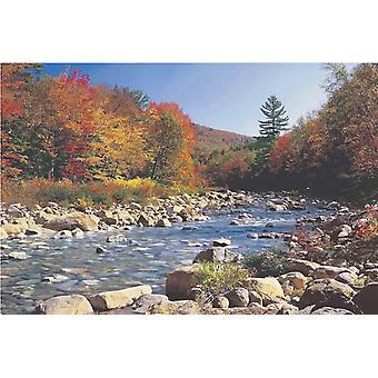 Poster - Studio B - 24x36 Autumn Brook Wall Art CJ3764