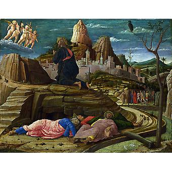 Andrea Mantegna - The Agony Garden at Night Poster Print Giclee