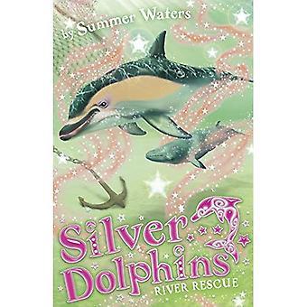 Zilveren dolfijnen