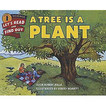 A Tree Is a Plant (Let's-Read-And-Find-Out Science: Stage 1 (Pb))