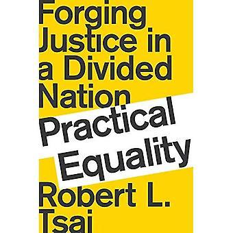 Praktische gelijkheid: Smeden Justitie in een verdeelde natie
