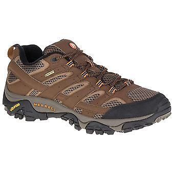 Merrell Earth Mens Moab 2 GTX Walking Shoe
