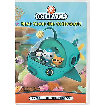 Her kommer Octonauts! [DVD] USA import