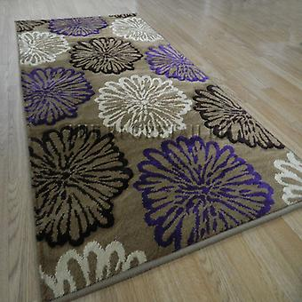 Rugs - Paloma 9522-D