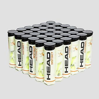 Head Instinct Tennis Balls (144 Balls)