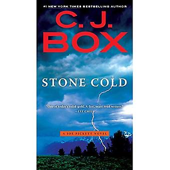 Stone Cold (Joe Pickett romaner)