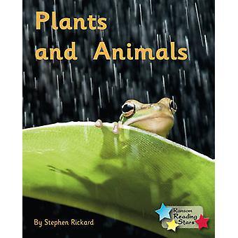 Pflanzen und Tiere - 9781781277942 Buch