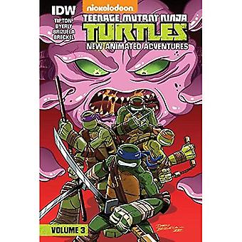 Teenage Mutant Ninja Turtles: New Animated Adventures: Volume 3