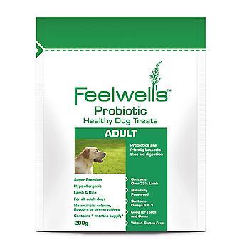 Feelwells probiotiske sund behandler Super Premium Adult lam & ris 200g (pakke med 6)