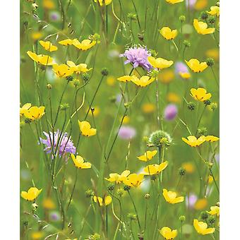Holden Decor Meadow Photo Mural Flowers Garden Green Yellow Feature Wallpaper