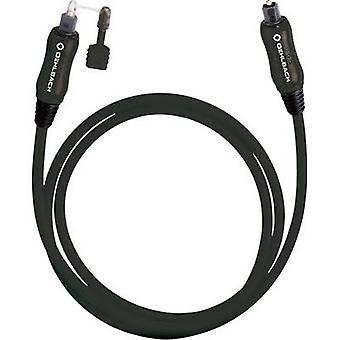 Cable de Audio Digital Toslink [1 x Toslink enchufe (ODT) - 1 x Toslink (ODT)]