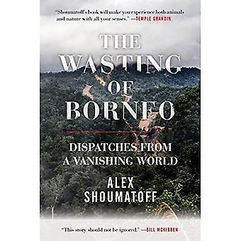 Slöseri av Borneo