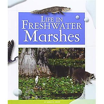 Life in Freshwater Marshes (Life in Water Biomes)