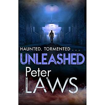 Unleashed: The compelling crime novel guaranteed to give you the creeps (Matt Hunter)