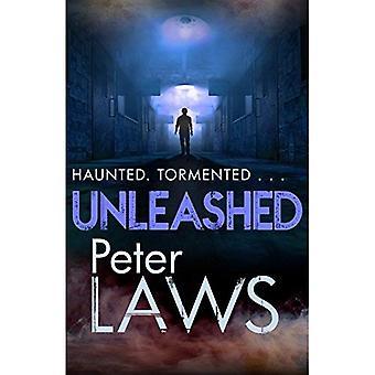 Unleashed: The compelling crime novel guaranteed to give you the creeps (Matt Hunter)