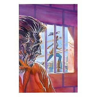 Astro City Volume 14-refleksioner af Kurt Busiek-9781401274924 Book