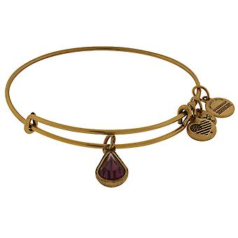 Alex and Ani February Drop Charm Bangle Bracelet - Rafaelian Gold - A17EB41RG