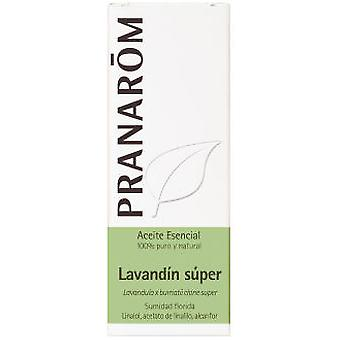 Pranarom Essential Oil Lavandin Super Bio