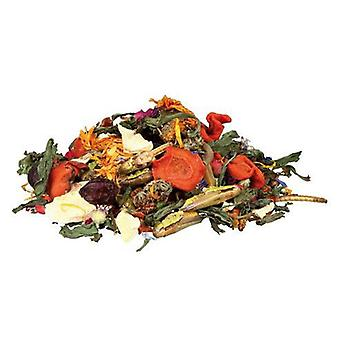 Trixie Natural Food Mixture for Bearded Dragons (Reptiles , Reptile Food)