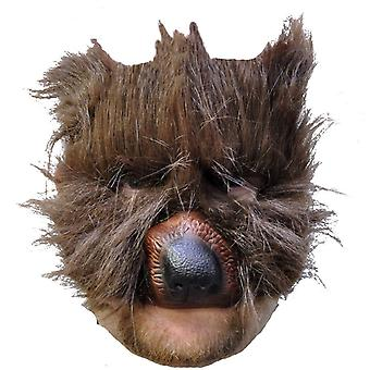 Bear Plush Mask For Adults