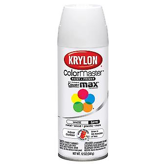 Colormaster Indoor/Outdoor Aerosol Paint 12oz-Satin White 1000A-53564