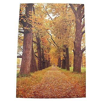Scenic Autumn Trees Printed Canvas Wall Art