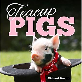 Teacup Pigs (Hardcover) by Austin Richard