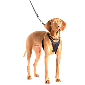 Company of Animals Non-Pull Harness For Large Dogs L Size Dog Training Control